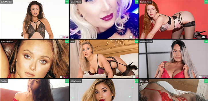 Babestation Webcams