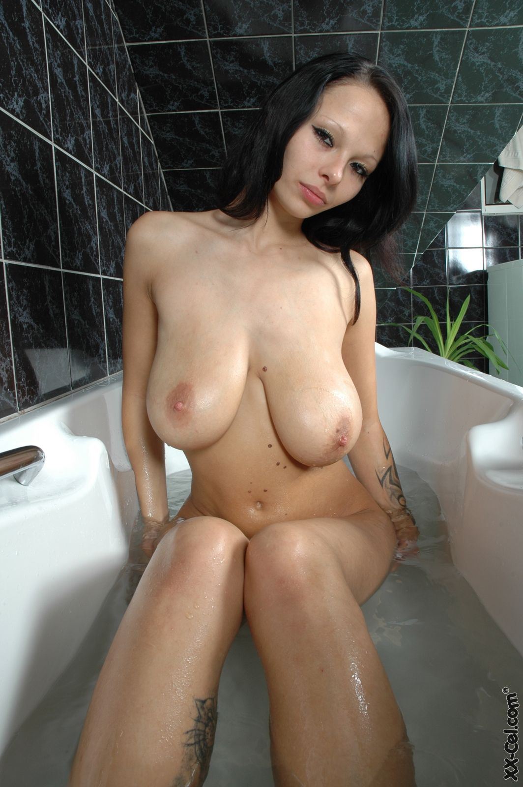 Hot Shaved And Horny Lola