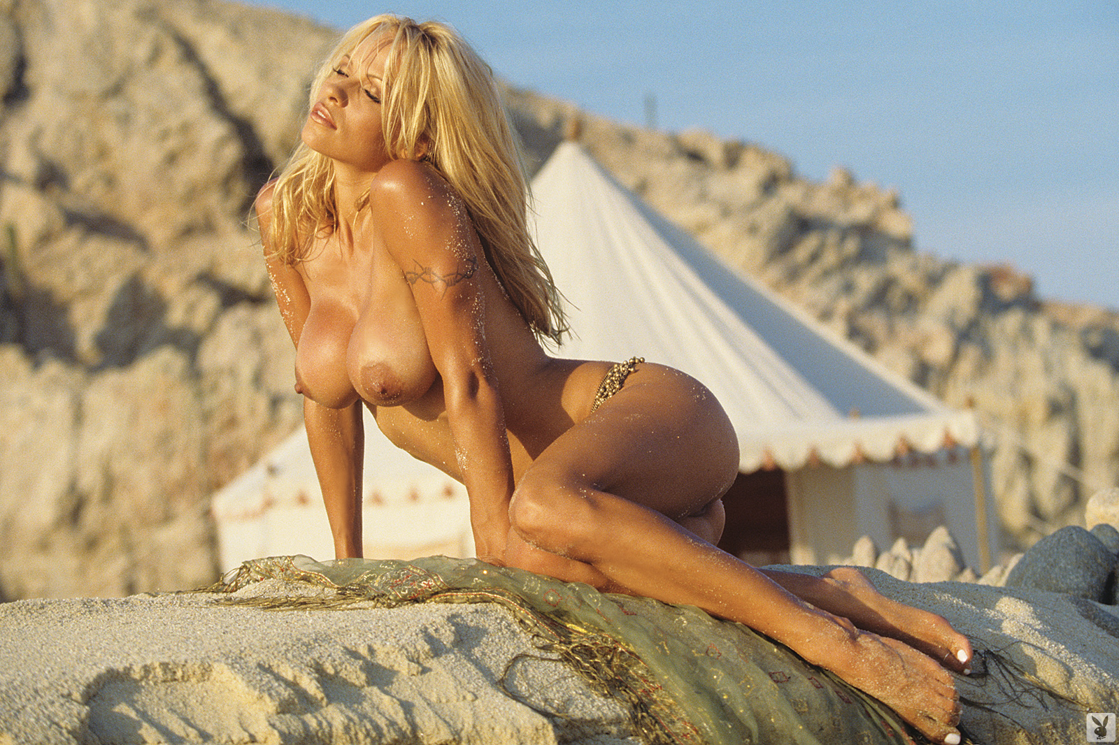 pamela anderson boobs naked